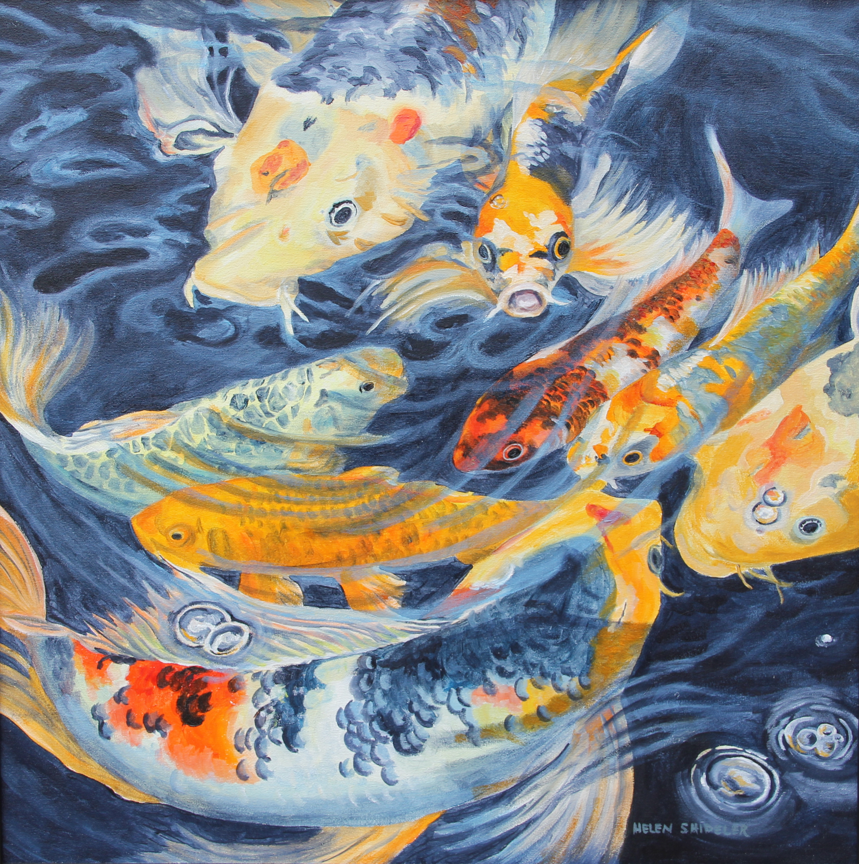 Oil painting oif koi fish helen shideler cspwc for Koi fish art paintings